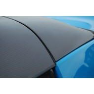 Lotus Elise Carbon Fibre Roof & Rollbar cover kit